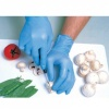 Shield GD21 Powder-Free Blue Nitrile Disposable Gloves